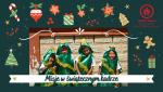 Misje w świątecznym kadrze